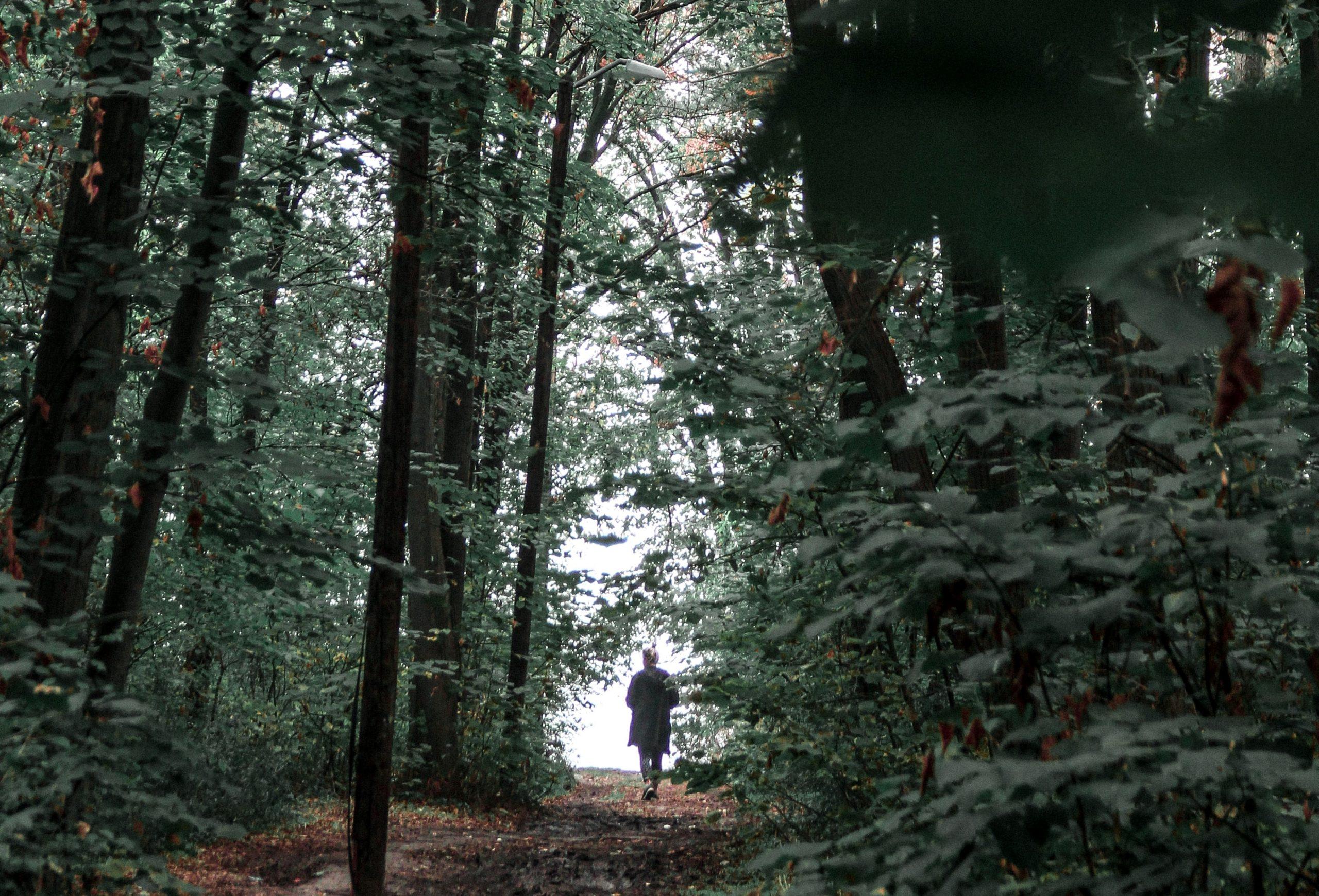 Jesienny Rajd św. Huberta